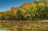 長野県 志賀高原 紅葉の蓮池
