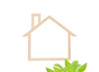 木の家のフレームとポトス