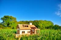 草原の模型の家