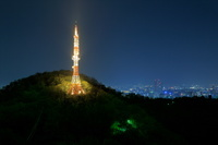 金華山ドライブウェイ見晴台から上加納山タワーと岐阜市街の夜景