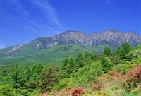 山梨県 美し森のツツジと八ヶ岳