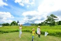 夏の高原・草原で遊ぶファミリー