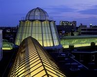 クーポラのあるアーケードの屋根 夜景 ハーグ オランダ