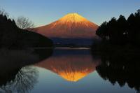 静岡県 夕日に染まる富士山と田貫湖に映る逆さ富士