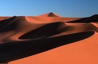 ナミビア ナミブ砂漠 ソーサスフレイ