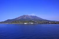 鹿児島 錦江湾と桜島港