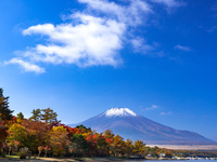 山梨県 山中湖畔 富士山