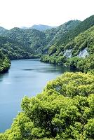 三重県 七色貯水池(七色ダム)