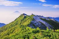 山梨県 鳳凰三山 観音岳より薬師岳と富士山 南アルプス