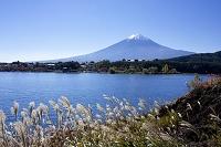 河口湖と富士山 富士河口湖町 山梨県