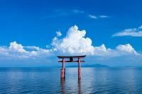 滋賀県 夏の白鬚神社と積乱雲と琵琶湖