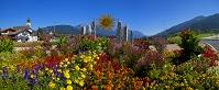 オーストリア チロル 造園