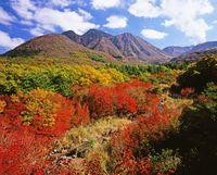 大分県 長者原・三俣山(左)と硫黄山(右)