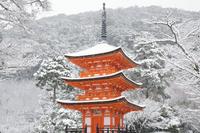 京都府 子安の塔