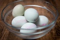 アローカナ(鶏)の卵