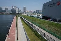 東京 豊洲ぐるり公園