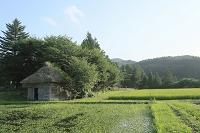 岩手県遠野 山口の水車と田園