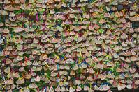 宮崎県 高千穂峡のハートの絵馬