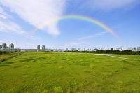 東京都 再開発地区の空き地とビル群