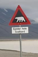 ホッキョクグマの標識