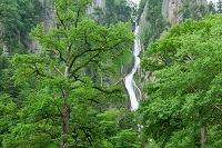 北海道・層雲峡 銀河の滝