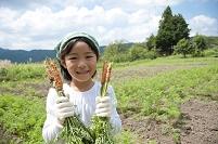 畑の中で収穫した人参を持つ日本人の女の子