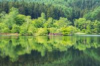 長野県 新緑の大地