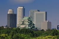 名古屋城と高層ビル群