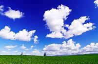北海道 雲流れるビート畑の丘
