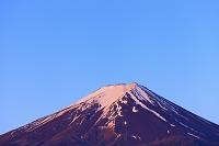 山梨県 朝日に染まる残雪の富士山 農鳥(雪形)