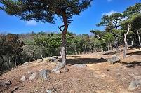 岡山県 鬼ノ城の礎石建物群
