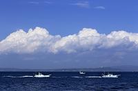 東京湾の漁船