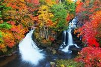 栃木県 日光市 紅葉と竜頭の滝