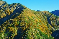 富山県 天狗平から朝の奥大日岳