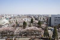 神奈川県 相模原市街