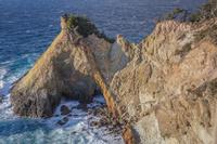 静岡県 黄金崎の奇岩 馬ロック