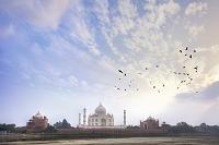 インド アグラ タージ・マハル