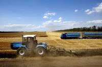 ロシア ロストフ州 冬小麦の収穫