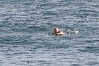 G7首脳会議 ジョンソン首相、2日目早朝に海水浴