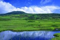 山形県 月山 弥陀ヶ原湿原