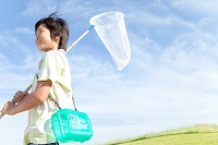 昆虫採集をする日本人の男の子