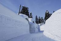 新潟県 雪の壁
