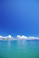 神奈川県 湘南の海