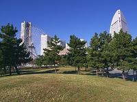 新港パーク芝生広場よりランドマークタワーを望む