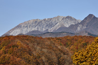 蒜山高原から望む大山