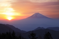静岡山梨県境 山伏岳 富士山と朝日