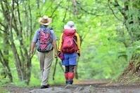 緑の森を歩くカップル