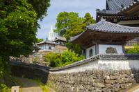 長崎県 寺院と教会の見える風景 瑞雲寺と光明寺と平戸ザビエル...