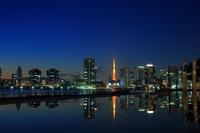 東京都 晴海客船ターミナルと高層ビル群の夜景