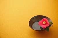 椿の花と和食器